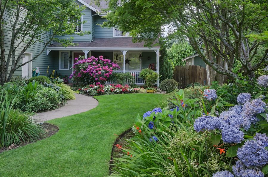 longmont lawn care
